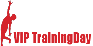 Logo VIP TrainingDay